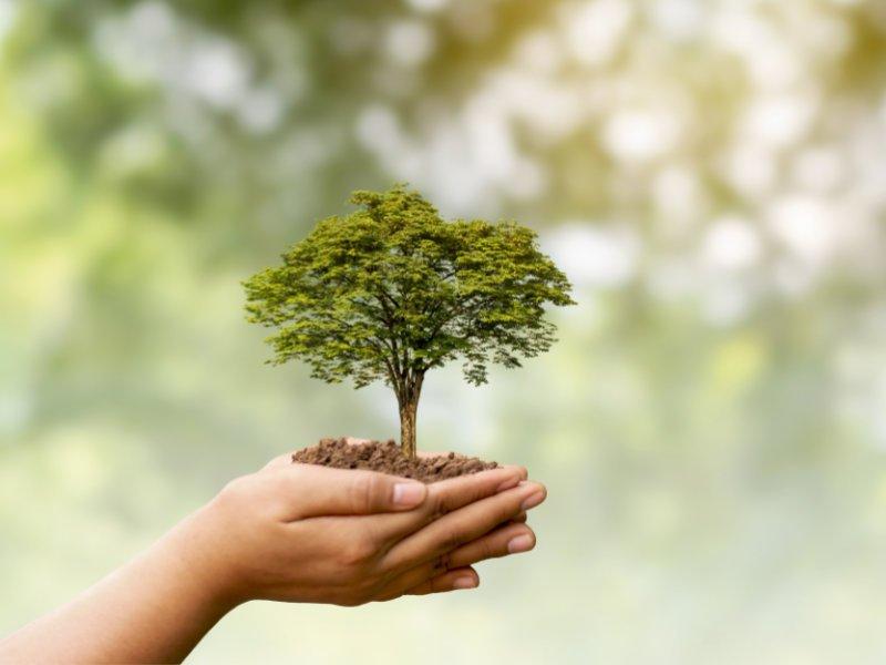 Klimaschutz Paket